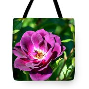 The Fallen Petal Tote Bag