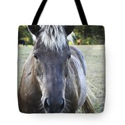 The Farmers Horse Tote Bag