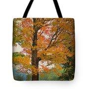 The Fay Tree Tote Bag