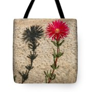 The Flower And Its Shadow Tote Bag