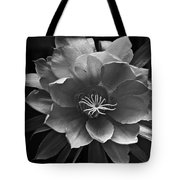 The Flower Of One Night Tote Bag