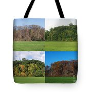 The Four Seasons Tote Bag