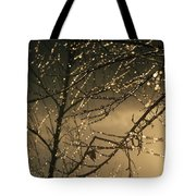 The Frozen Branches Of A Small Birch Tote Bag