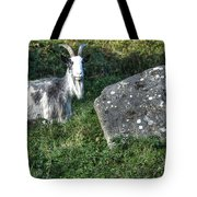 The Goat And The Stone Tote Bag