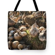 The Gourd Family Tote Bag
