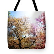 The Grandest Of Dreams - Cherry Blossoms - Brooklyn Botanic Garden Tote Bag