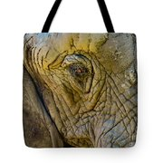 The Great Tote Bag