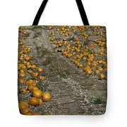 The Great Pumpkin Patch Trail Tote Bag