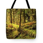 The Hall Of Mosses Tote Bag