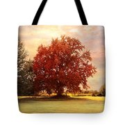 The Healing Tree  Tote Bag by Jai Johnson