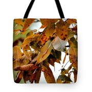 The Hickory In Autumn 2 Tote Bag
