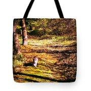 The Hiker Tote Bag