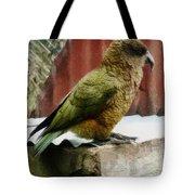 The Intelligent Kea Tote Bag