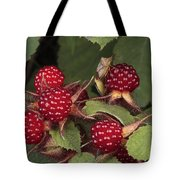 The Invasive Wine Berry And Shield Bugs Tote Bag