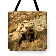 The Itch Tote Bag