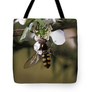 The Jewel Like Eyes, Transparent Wing Tote Bag