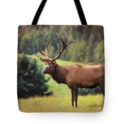 The King Of Winslow Hill Tote Bag