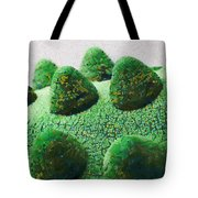 The Land Of Milk And Money Tote Bag