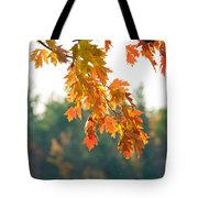 The Last Bit Of Fall Tote Bag