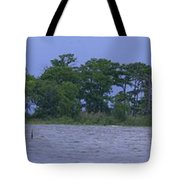 The Lighthouse At Lake Road Tote Bag