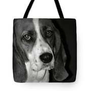 The Little Dog Tote Bag