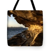 The Malaspina Galleries Tote Bag