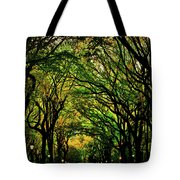 The Mall In Fall Tote Bag