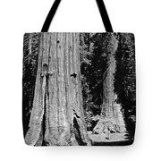 The Mariposa Grove In Yosemite Tote Bag