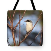 The Masked One Tote Bag