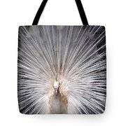 The Mating Fan Tote Bag