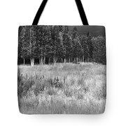 The Meadow Black And White Tote Bag