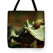 The Meek Shall Tote Bag