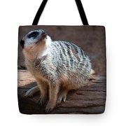 The Meercat  Tote Bag
