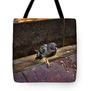 The Mighty Pigeon Tote Bag