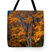 The Moment Of Glory Tote Bag