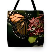 The Morning Monarch Tote Bag