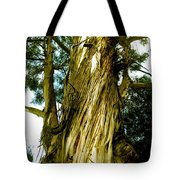 The Morning Tree Tote Bag