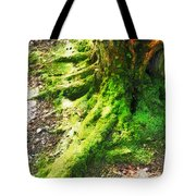 The Moss Covered Roots Tote Bag