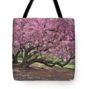 The Most Beautiful Cherry Tree Tote Bag