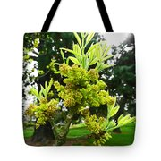 The New Growth Has Begun  Tote Bag