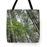 The Northwoods Tote Bag
