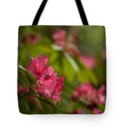 The Observers Tote Bag