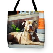 The Old Soul Tote Bag