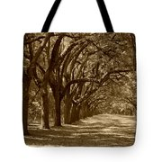 The Old South Series In Sepia Tote Bag