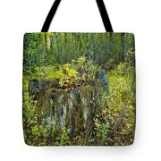 The Ongoing Struggle  Tote Bag