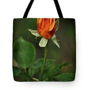The Orange Rose Tote Bag