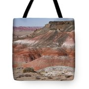 The Painted Desert  8013 Tote Bag