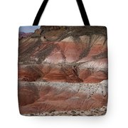 The Painted Desert  8018 Tote Bag