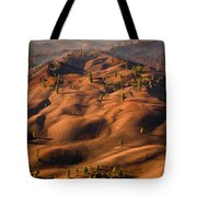 The Painted Dunes Tote Bag