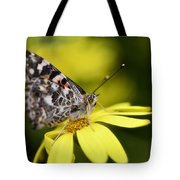 The Painted Lady And The Daisy  Tote Bag